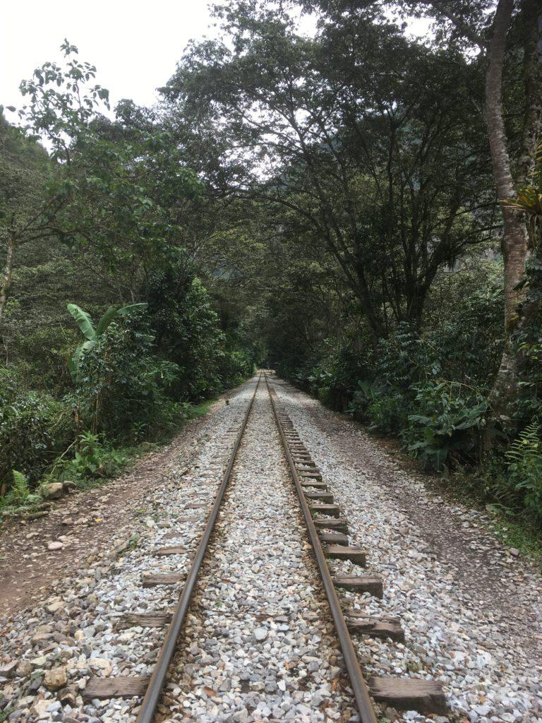Im dichten Dschungel vor Macchu Piccu gibt's auch eine Eisenbahn