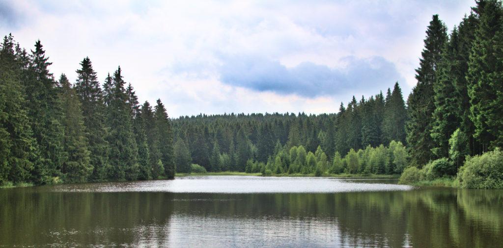 Ein Harzer See.
