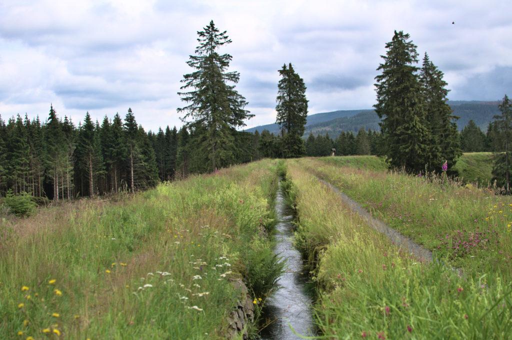 Ein Kanal auf einem Wehr im Harz das  in Richtung der Berge führt.