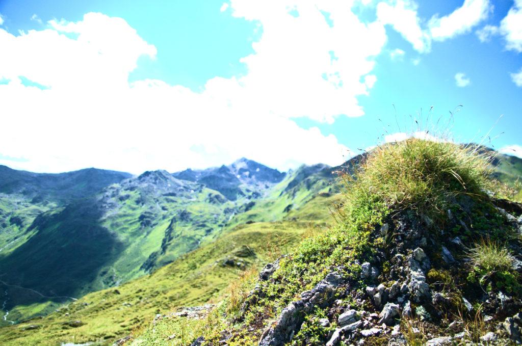 Gebirge mit Moos im Vordergrund.